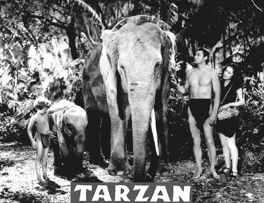 Tarzan, John Weissmuller
