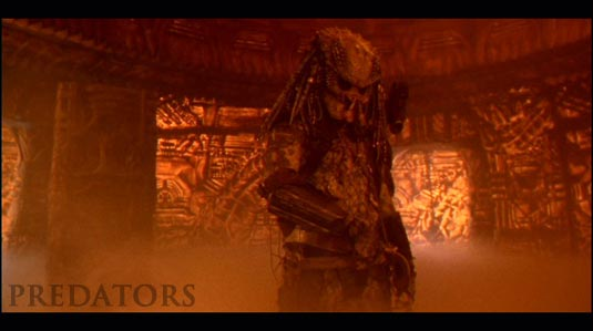 Predators photo