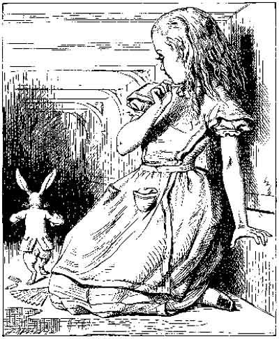 Alice - John Tenniel 1865