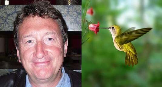 Steven Knight,Hummingbird