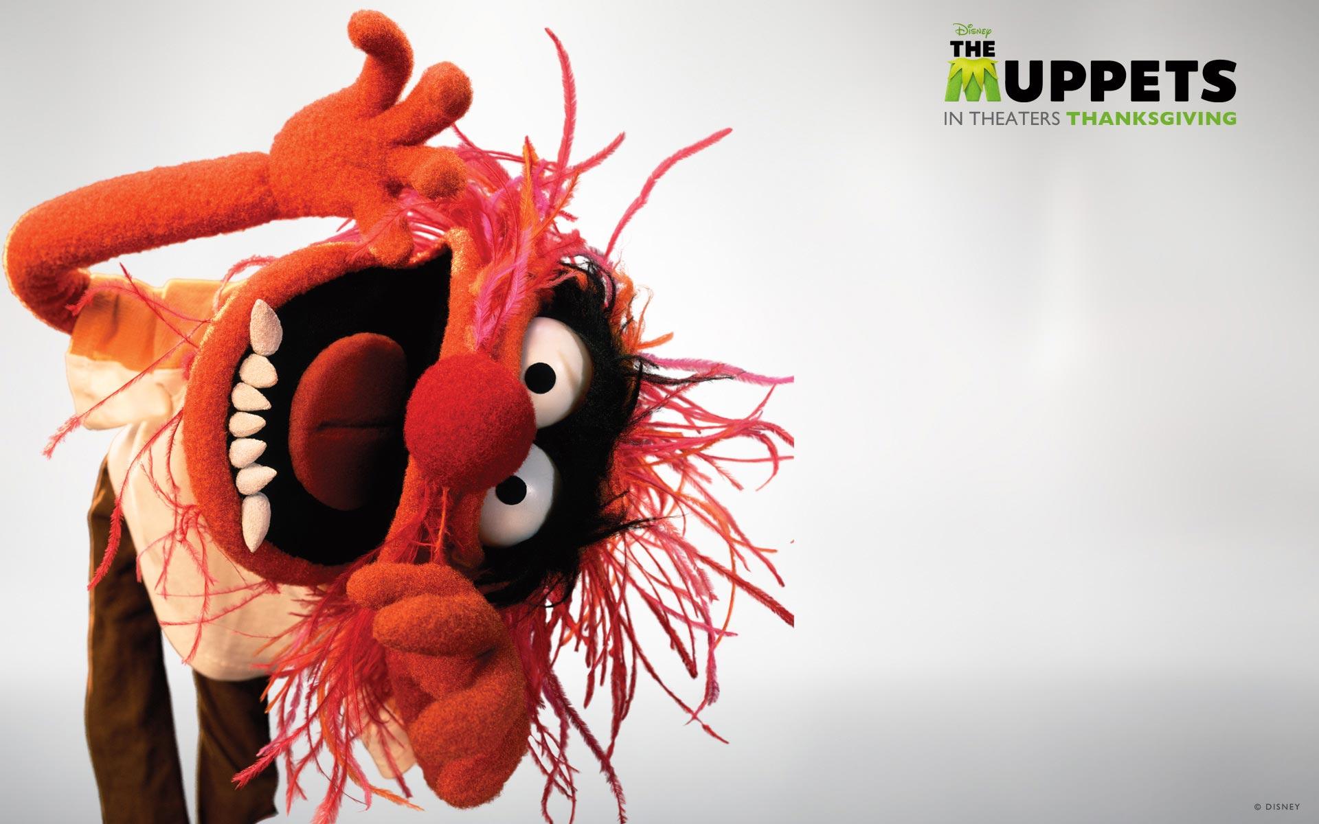 animal muppet wallpaper - photo #1