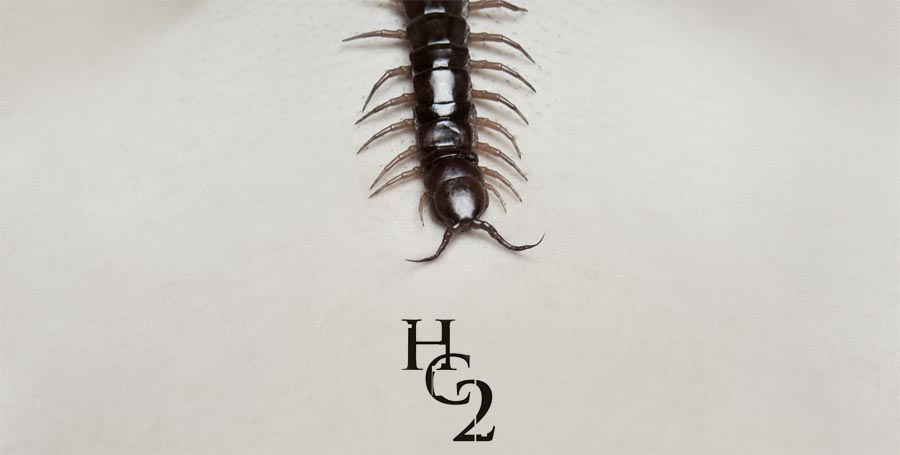 The Human Centipede 2 Trailer And Poster Filmofilia Make Your Own Beautiful  HD Wallpapers, Images Over 1000+ [ralydesign.ml]