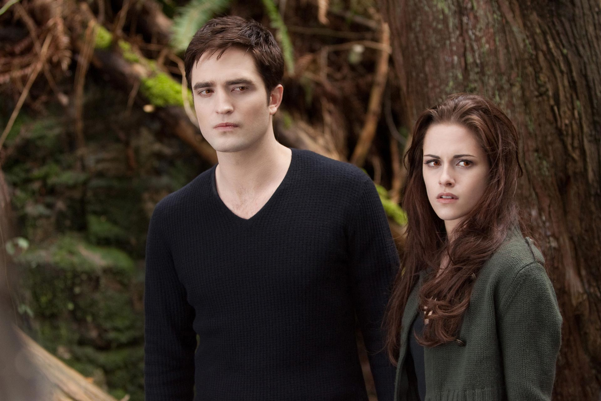 Irish Twilight Sisters: 49 New 'Breaking Dawn Part 2 ...