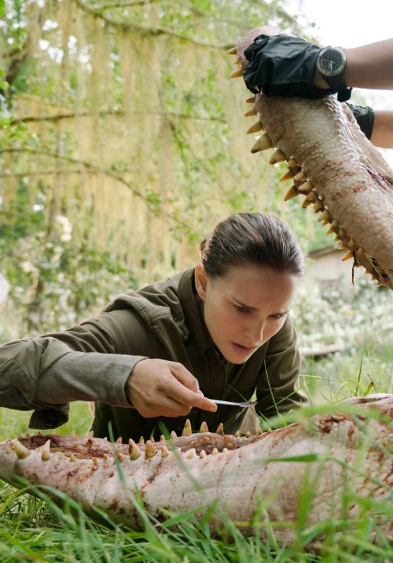 ANNIHILATION Photos and Trailers